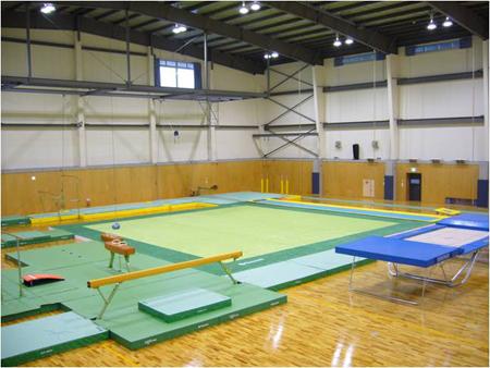 バク転、体操教室(東京)